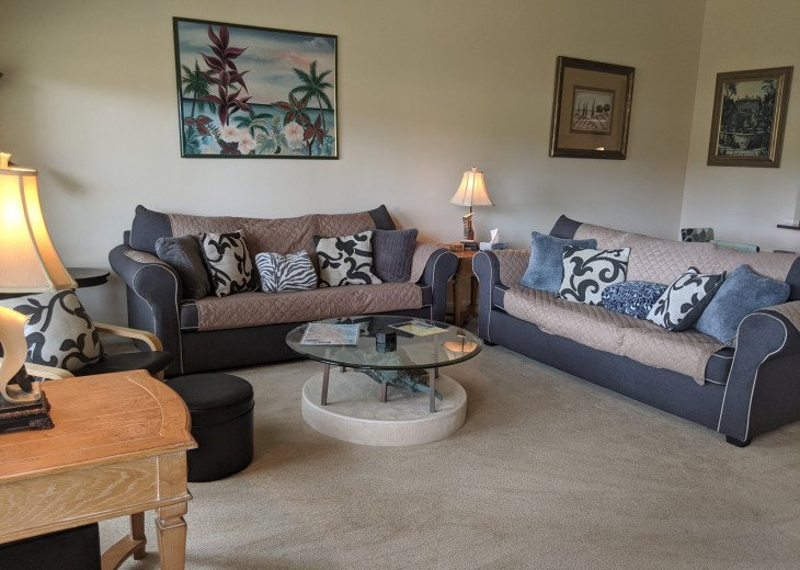 BEAUTIFUL 2/2 VILLAS, 3-month winter special only: $29k Heated Pool and Jacuzzi! #1