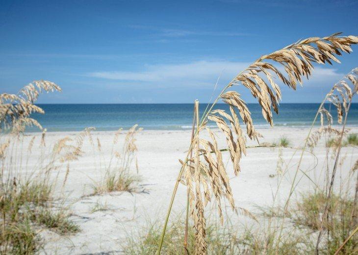 Beautiful Pass a Grille Beach