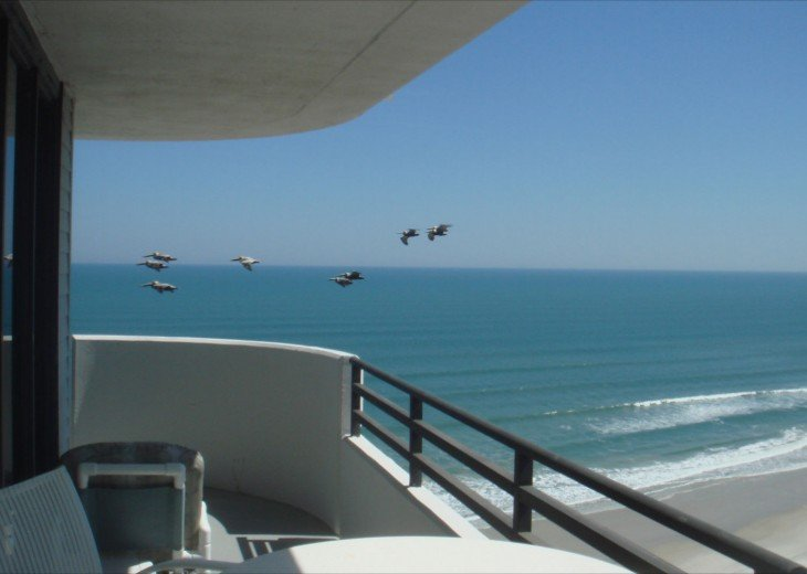Experience Luxury on the Top Floor Ocean Front Condo #1