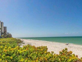NAPLES BEACH FRONT CONDO - SAVOY