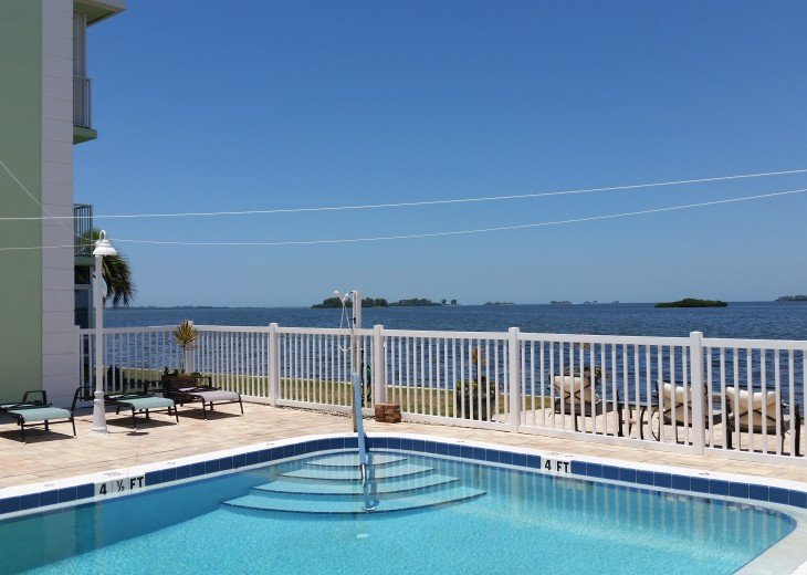 Heated Swimming pool over looking the bay.