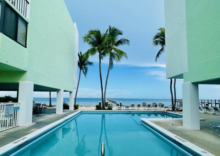 Ocean Front building with Ocean Front pool in beautiful Islamorada! #1