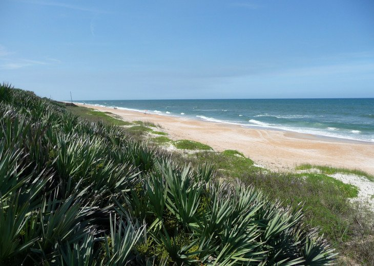 Ormond-by-the-Sea northward