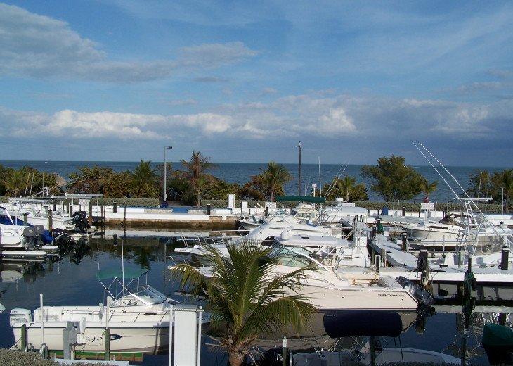 Key Largo Ocean Front / Marina Front Condominium #1