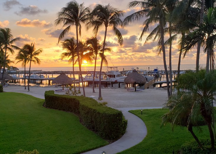 Ocean Harbour Condo with breath taking views! #1