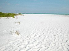 Beach front Midnight Cove condominium on Siesta Key! #1