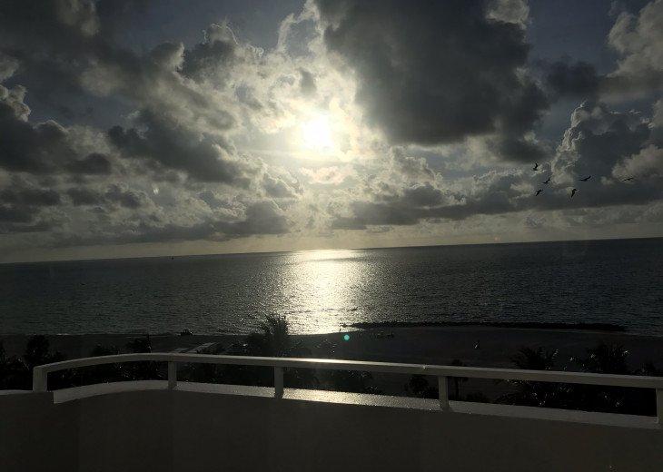 Heaven in Paradise #1